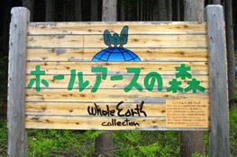 間伐材をノベルティ用の割り箸や看板などとして店頭と連携して有効利用