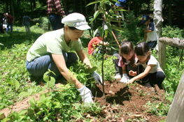 社員や地域の方々と交流しながらの森づくり