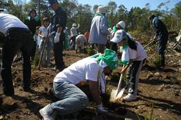 『ニッセイ苫小牧の森』植樹活動(2007年度)