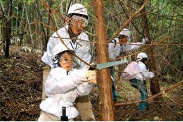 サントリー社員による森林保全活動の様子