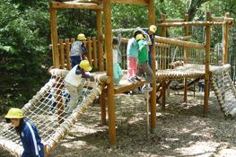 『ソニーの森』で遊ぶ子どもたち