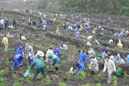 社員や地元・一般の方などによる植樹