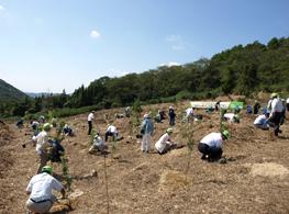 植樹活動に参加する会員事業者