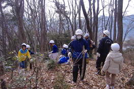 学校林の整備活動