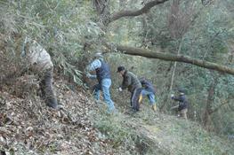 社員やOBによる下草刈り活動
