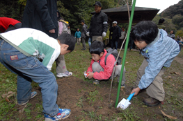 横浜市氷鳥沢市民の森保全活動
