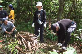 能登半島・珠洲市の保全林で間伐を行う三井物産の社員と家族