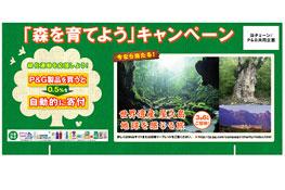 「森を育てよう!キャンペーン」ポスター