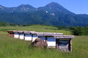 しれとこ100平方メートル運動(北海道) 1985年