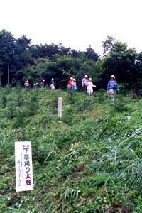 森づくりフォーラムが主催して 多くの市民が参加した「下草刈り大会」