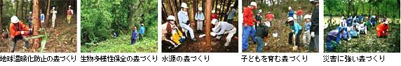 photo_green_03