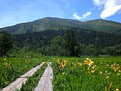 緑豊かな群馬の自然 尾瀬ヶ原と至仏山  (尾瀬保護財団提供)