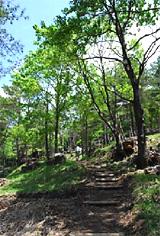 ふれあいの場として整備が進む 「ミニ里山公園」