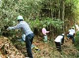 企業による森づくり活動 (高松市塩江町)