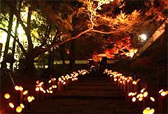 竹灯籠イベント