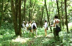 埼玉県森づくりサポートセンター 現地案内