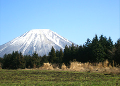 フィールドから一望される「大山」