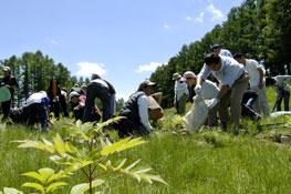 閉鎖されたゴルフ場を森に還すための植林活動