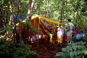 森林でのキャンプ
